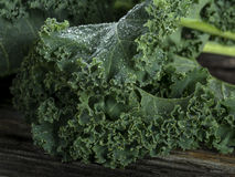 Organic Kale Royalty Free Stock Images