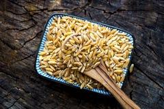Organic Kamut grain Stock Photos