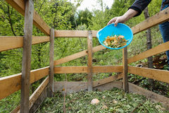 Organic kitchen waste being thrown on a compost. Organic kitchen waste being thrown on a homemade compost in the garden. Natural gardening, waste sorting, food Stock Image