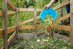 Organic kitchen waste being thrown on a compost. Organic kitchen waste being thrown on a homemade compost in the garden. Natural gardening, waste sorting, food Royalty Free Stock Image