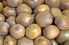Organic kiwi fruit in a pile Stock Images