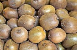 Organic kiwi fruit in a pile Stock Images