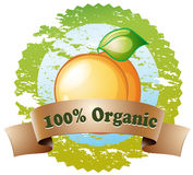 An organic label with a ripe orange Stock Image
