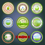 Organic labels, badges and stickers. Set of labels, badges and stickers on organic and natural food stock illustration