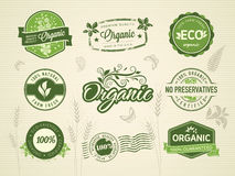 Organic labels. Collection of organic labels, seals, stamps Stock Photos