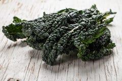 Organic Lacinato Kale horizontal shot Stock Image