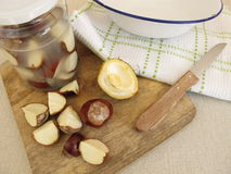 Organic laundry detergent from chestnuts in jar Stock Photography