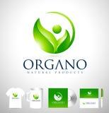 Organic Leaf Logo Design Stock Photography