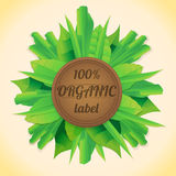 Organic leaves label Royalty Free Stock Photography