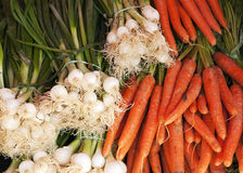 Organic leek onions and carrots Stock Photos