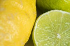Organic Lemon fruit Detail in green, white and yellow Royalty Free Stock Images