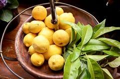 Organic Lemons Royalty Free Stock Image