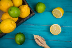 Organic lemons and limes with squeezer on table Stock Image