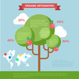 Organic life flat vector infographics: global eco friendly tree Stock Images