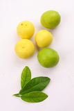 Organic limes with lime tree leaf,. In white background royalty free stock photography