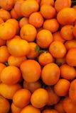 Organic Mandarin oranges Stock Images