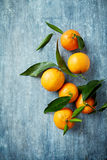 Organic mandarin oranges with leaves Royalty Free Stock Images