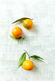 Organic mandarin oranges with leaves Royalty Free Stock Photo