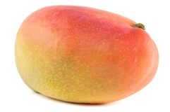 Organic Mango on white background Royalty Free Stock Images
