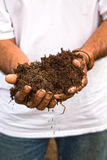 Organic manure Royalty Free Stock Images