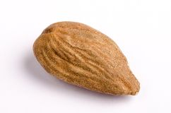 Organic Marcona almond with skin on white background stock photos
