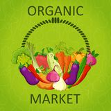 Organic market vector illustration . Stock Photography