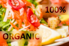 100% Organic Meal. Concept with colored and various food background Stock Image