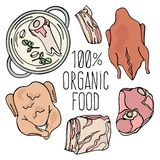 ORGANIC MEAT Carnivore Natural Food Vector Illustration Set. ORGANIC MEAT Carnivore Diet Mind Healthy Natural Food Proper Nutrition Eating Vector Illustration royalty free illustration