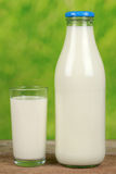 Organic milk in a bottle Stock Images
