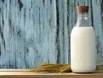 Organic milk in a glass bottle Royalty Free Stock Image