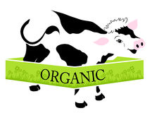 Organic milk and meat Royalty Free Stock Image
