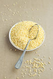 Organic Millet Gruel in a Spoon Stock Image