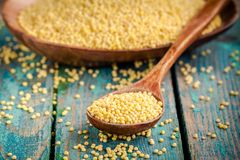 Organic millet seeds in a wooden spoon closeup Stock Images