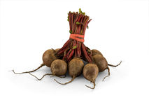 Organic Mini Bunched Beetroot. Isolated on white background royalty free stock photography