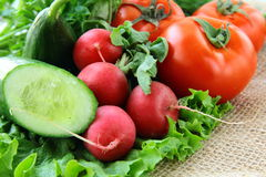 Organic mix of fresh vegetables Royalty Free Stock Images