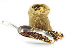 Organic Mixed Beans in Gunny Sack Stock Photography