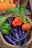 Organic mixed vegetables. A basket of assorted organic mixed vegetables is for sale at an outdoor farmers' market in the fall Royalty Free Stock Photo