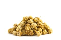 Organic Mulberries. A pile / heap of raw organic mul berries on white background royalty free stock image