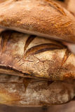 Organic multigrain breads at the bakery Stock Images