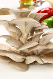 Organic Mushroom Royalty Free Stock Images