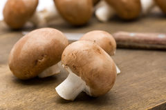 Organic mushrooms Stock Photo