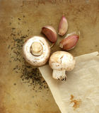 Organic mushrooms, garlic and herbs on an old rustic stone chopping board. Still life composition from above Royalty Free Stock Images