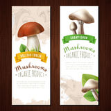 Organic Mushrooms Vertical Banners Stock Images