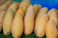 Organic Nam Dok Mai mangoes for sale at the fruit market. The Na. M Doc Mai (Nam Dok Mai) mango is a mango cultivar which originated in Thailand. It is the most royalty free stock photo