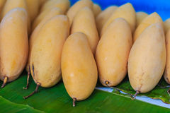 Organic Nam Dok Mai mangoes for sale at the fruit market. The Na. M Doc Mai (Nam Dok Mai) mango is a mango cultivar which originated in Thailand. It is the most royalty free stock photography