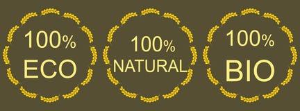 Organic natural and eco food icons. Set Stock Illustration