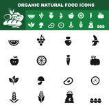 Organic natural food icon  Stock Photo