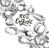 100 organic calligraphy inscription with hand drawn vegetables. Organic natural fresh vegetables set. cucumber, pumpkin, onion, garlic, carrot, potato,eggplant stock illustration
