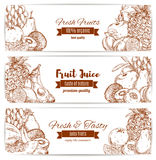 Organic natural fruit food sketch banner Stock Photography