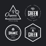 Organic natural and healthy farm fresh food retro emblem set. Monstera leaf and olive tree vintage logo badge isolated on dark background. Premium quality Stock Photo